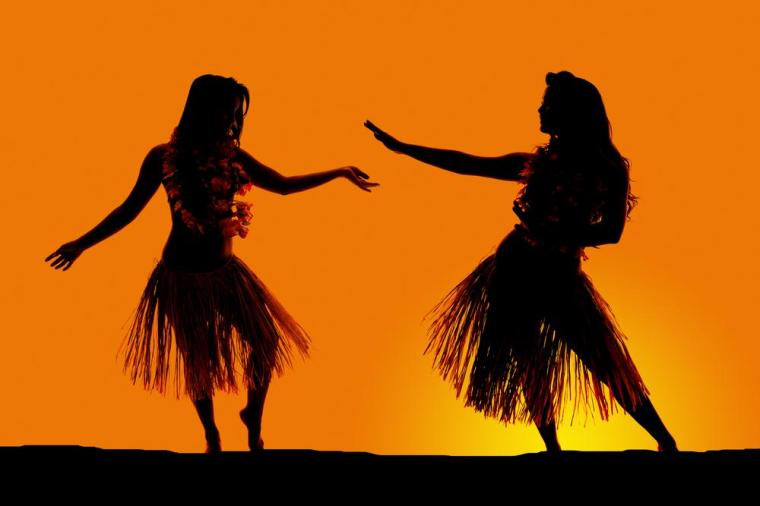 silhouette-of-two-women-dancing-in-their-grass-skirts-in-the-outdoors